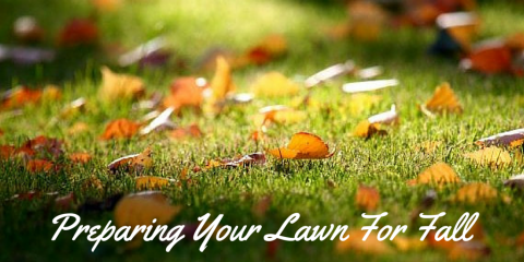 Preparing Your Lawn For Fall: Lawn Care Tips From Dr. Green Lawns, Wolcott, Connecticut