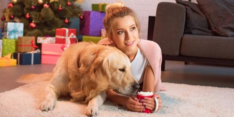 3 Safety Tips for Pets During the Holidays, Denver, Colorado