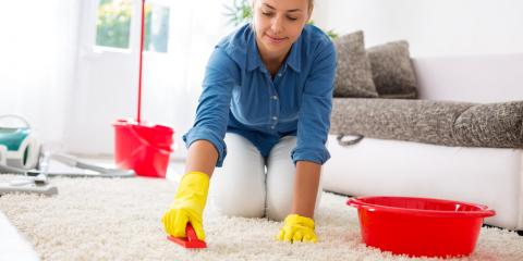 How Professional Carpet Cleaners Combat Mold, Anchorage, Alaska