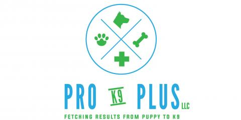 Pro K9 Plus LLC, Pest Control and Exterminating, Services, Milford, Connecticut