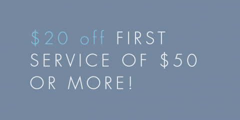 $20 Off a Service of $50 or More For First Time Customers, Alexandria, Virginia