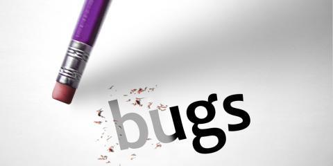 Exterminators Explain Flea Treatment Process Basics, Statesboro, Georgia