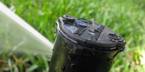 Miamisburg's Lawn Irrigation Service Explains the Benefits of Rain Bird Irrigation Systems, Miamisburg, Ohio