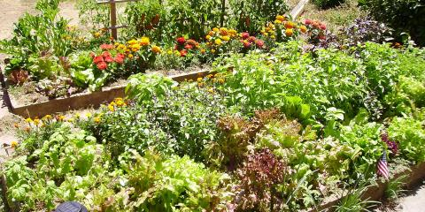 Make Your Garden Flourish With Mulch & Screened & Unscreened Topsoil, Manchester, Connecticut