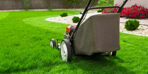 Top 3 Lawn Care Tips for Increasing Your Summer Efficiency, Randolph, New York