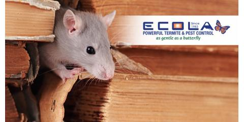 Do you trust your pest control company?, San Diego, California