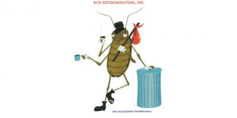 RCD Exterminating Inc, Pest Control, Services, Rochester, New York