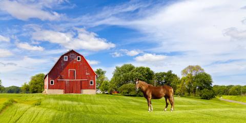 3 Tips to Help You Choose a Horse Property, Evergreen, Colorado