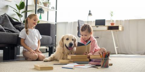 A Pet Owners' Guide to Selling Your House, Red Wing, Minnesota