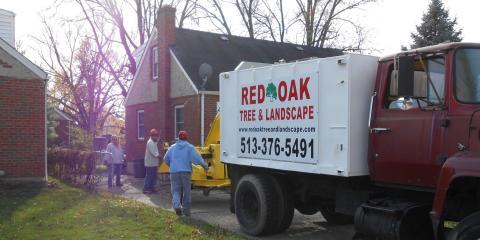 What is an Arborist? , Colerain, Ohio