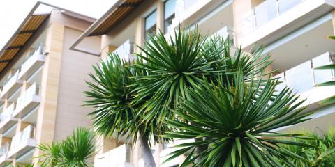 5 Reasons to Buy a Renters Insurance Policy, From Kailua-Kona's Top Agent, Kailua, Hawaii