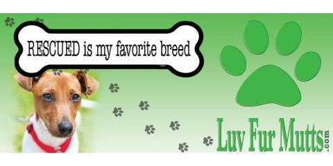 Liberty EarthWise Hosts Luv Fur Mutts Adoption Event , Middletown, Ohio