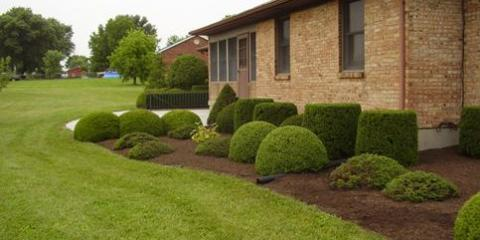 5 Residential Landscaping Mistakes Every Homeowner Should Avoid, Hanover, Ohio