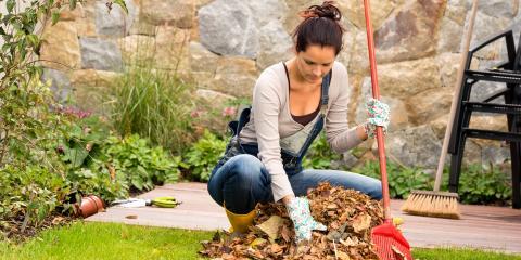 Landscaping Winter Prep Checklist, Elberta, Alabama
