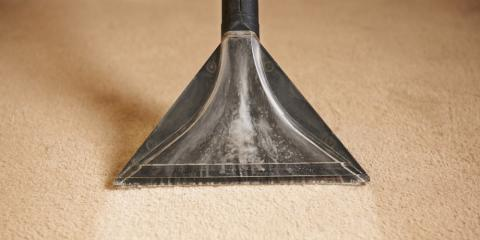 Webster Carpet Cleaning Service Explains the Difference Between Spots & Stains, Penfield, New York