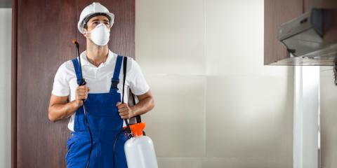 3 Benefits of Choosing a Residential Pest Control Service, Dothan, Alabama