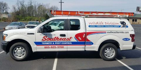 What to Expect When You Call Wildlife Control , 2, Tennessee