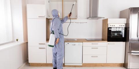 Should You Call for Pest Control Before You See the Bugs?, Lexington-Fayette, Kentucky