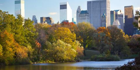 3 NYC Activities to Enjoy This Fall, Manhattan, New York
