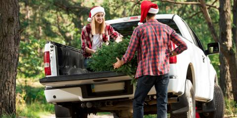3 Safety Tips When Driving With Your Christmas Tree, Rochester, New York