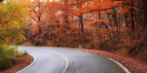 3 Autumn Driving Hazards to Avoid, Madison, Ohio