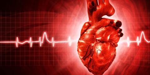 5 Fixable Risk Factors for Heart Disease, Rochelle Park, New Jersey