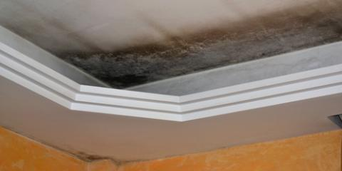3 Signs Your Property Has Water Damage, La Crosse, Wisconsin