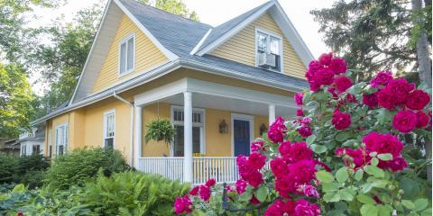 5 Reasons Rose Bushes Stop Blooming, Colerain, Ohio
