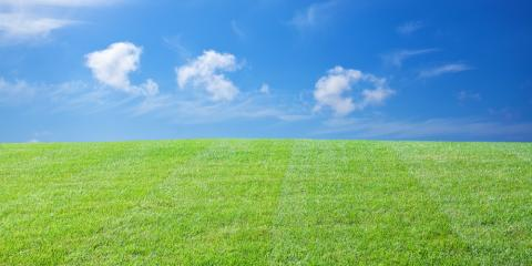 lawn treatment 101 whatu0027s the best way to care for arkansas grass illinois - Lawn Treatment