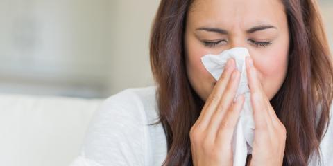 St. Louis' Leading Pharmacy Shares Facts & Tips About Seasonal Allergies, Lemay, Missouri