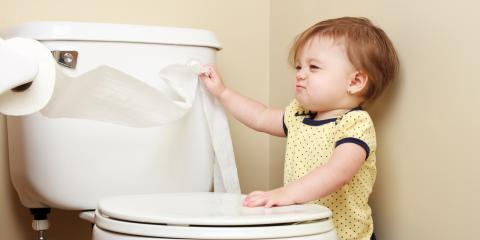 A Guide to Potty Training, St. Charles, Missouri
