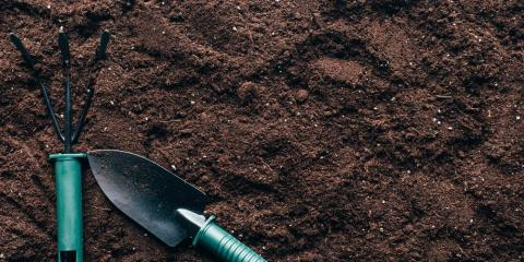 Improve Grass Seed Success by Understanding Your Soil, St. Peters, Missouri