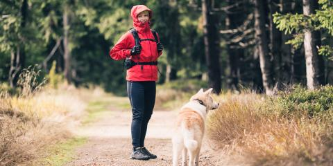 3 Steps to Take After Walking Your Dog in the Woods, San Marcos, Texas