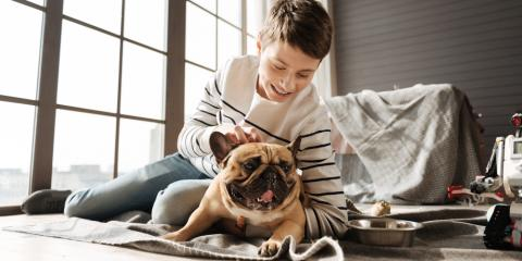 5 Foods to Avoid Feeding Your Dog During the Holidays, San Marcos, Texas