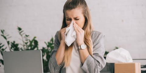 3 Myths About Allergies, Sanford, North Carolina