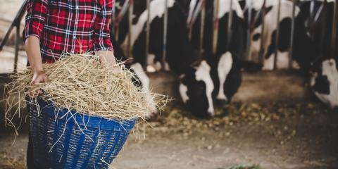 3 Ways to Get Your Pole Barn Ready for Winter, Savannah, Tennessee