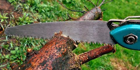 Benefits of Summer Roof Clearing & Tree Trimming Services, Austin, Texas