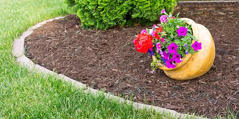 How to Choose the Best Mulch for Your Garden, Batesburg-Leesville, South Carolina