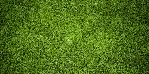 3 Benefits of Professional Lawn Maintenance Services, Batavia, New York