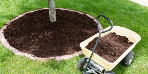 Lawn Maintenance 101: How Often Should You Replace Your Lawn's Mulch?, Batavia, New York