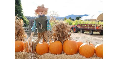 Free Scarecrow Making Event! , Colerain, Ohio