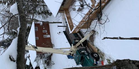 4 Benefits of Tree Removal, North Royalton, Ohio