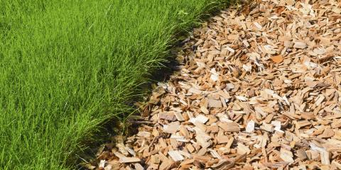 Why Using Mulch in Fall Makes Plants Thrive in Spring, Scottsville, New York