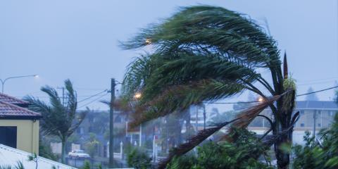 Tips for Preparing Your Windows for Hurricane Winds, Ewa, Hawaii