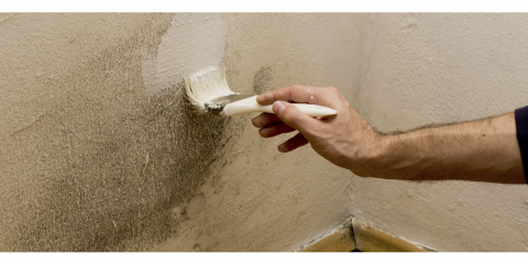 Mold Problems? Call Hi-Tech Foundation Solutions to Schedule Your Mold Inspection Today!, Loveland Park, Ohio