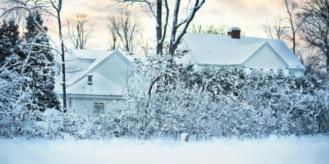 Keep Spiders Away This Winter With Minnesota S Best Pest
