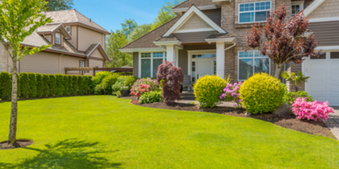Landscape Professionals Offer Advice for Watering Your Lawn, Covington, Kentucky
