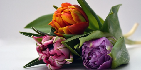 Get the Perfect Bouquet of Flowers With Flowerworks' Deal of the Day, Brooklyn, New York
