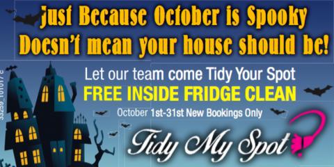 Spooky Savings - Free Fridge Cleaning!, Portland West, Oregon