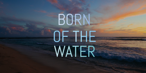 Born of the Water is Moving!, Honolulu, Hawaii